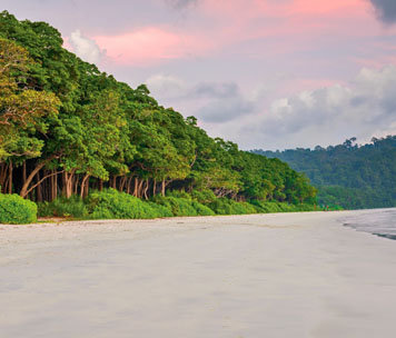 Andaman Standard Tour Packages